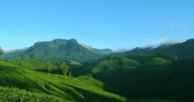 best places to stay in Munnar