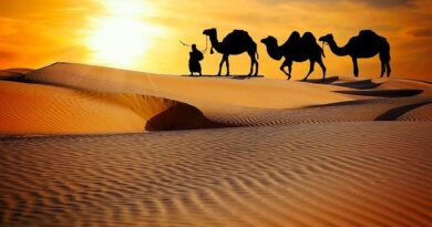 best holiday destinations in rajasthan